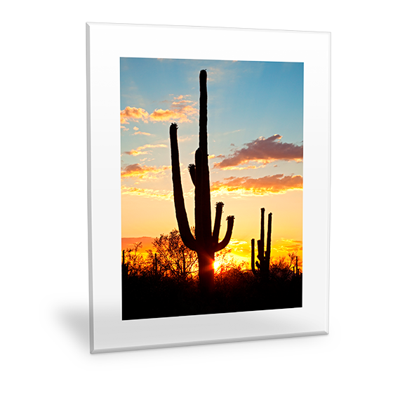 Customizable Clear Frame Wall Art